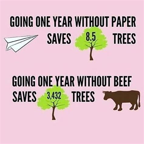 Short argumentative essay about environment